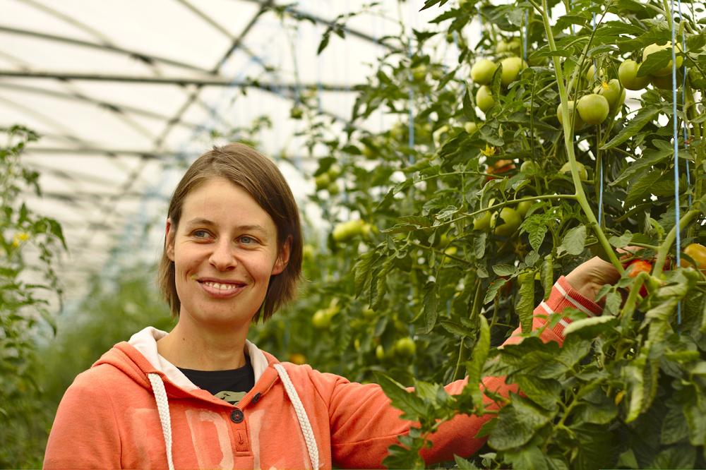 Carine Vrancken et ses tomates